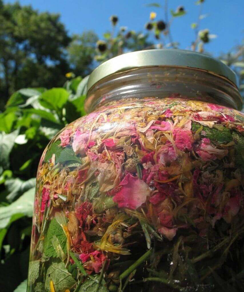 photo of herbs infusing in the sun